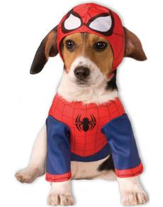 Costume de Spiderman pour chien