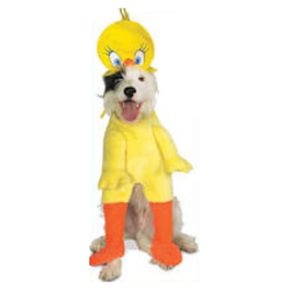 Costume Titi Looney Tunes chien